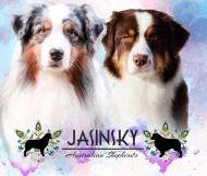 Jasinsky